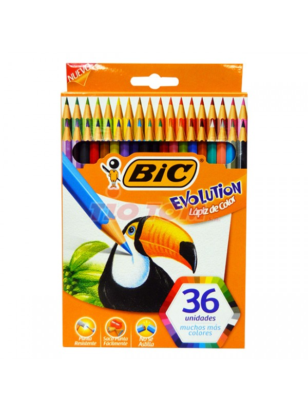 LAPIZ BIC EVOLUTION COLORIN x 36 LARGOS